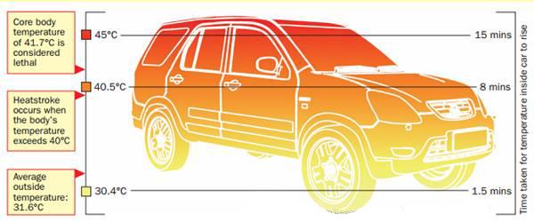 Car safety health tips